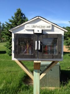 The Little Free Library box